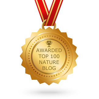 Best Nature Blogs