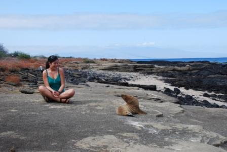 Q&A: Encounters with Wildlife on Galapagos Islands