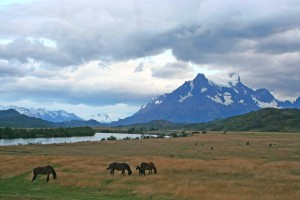 I knew that Patagonia was where I had to go. ©Candice Gaukel Andrews.