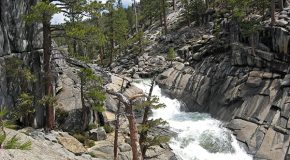 Traveling with an Adult Child: Yosemite