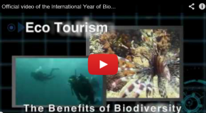 A Look Back at Biodiversity; Forecast for 2011