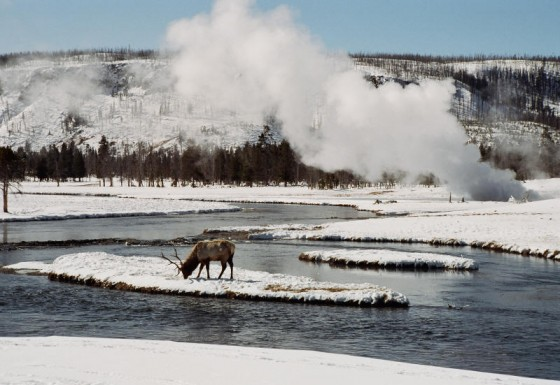 Happy Birthday, Yellowstone National Park!