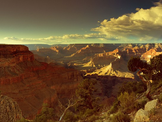 Take a Virtual Hike in our National Parks!