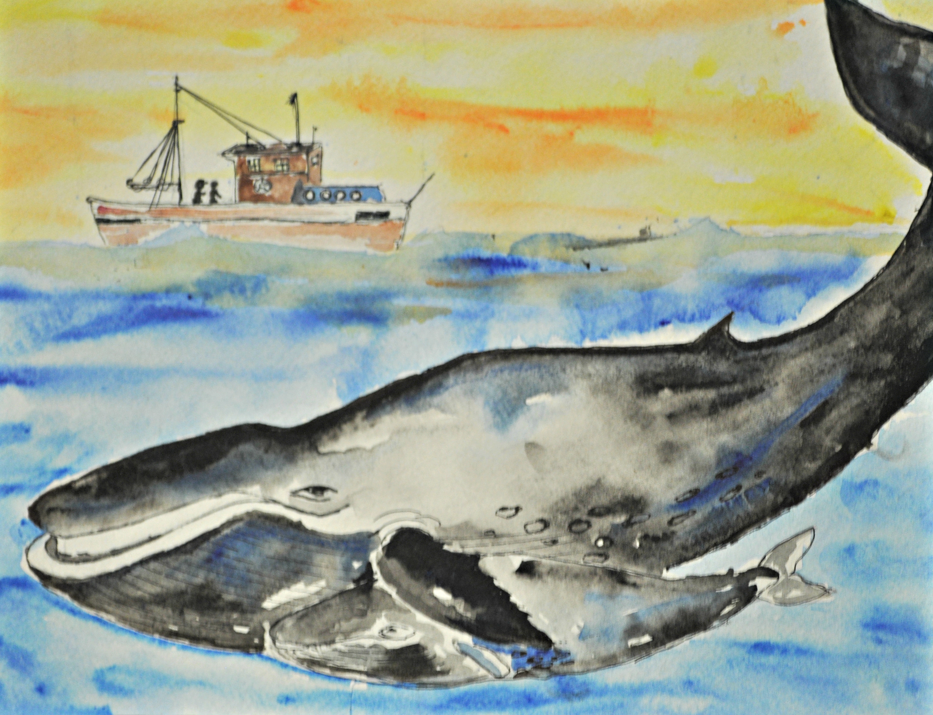 Youth Art Contest Produced Incredible Wildlife Artwork