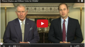 Video: UK Royalty Issues Plea to 'Unite for Wildlife'
