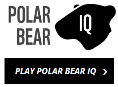 polar bear quiz