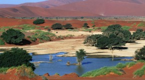 In Namibia, a Landscape Both Unforgiving and Awe-inspiring