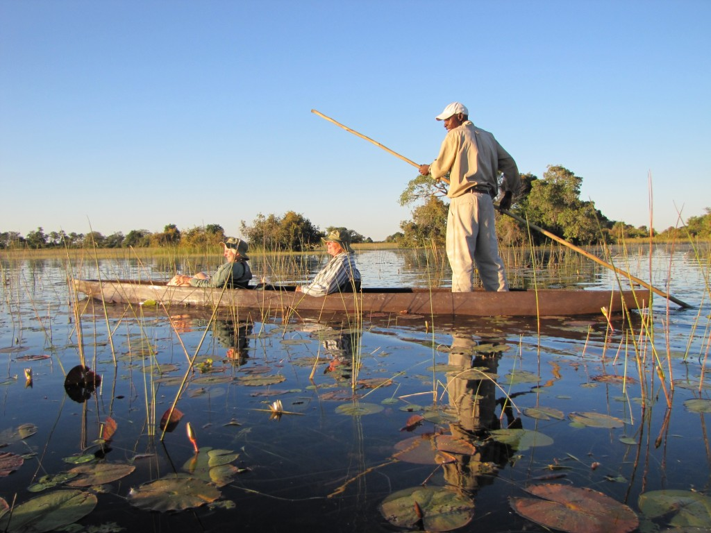 Traveling by a traditional dugout canoe, a mokoro, through the Okavango Delta