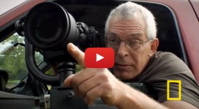 Video: Photography Tip for Shooting Wildlife