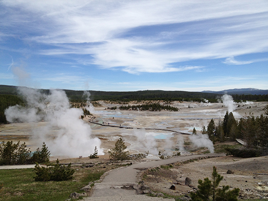 Old Faithful springs in Yellowstone
