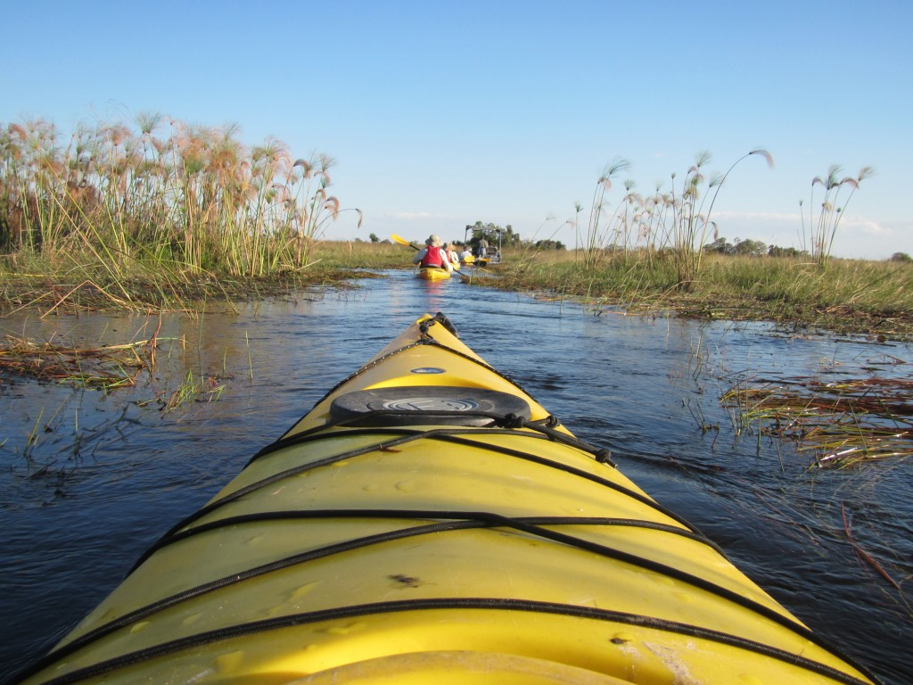 Okavango Delta, kayaking, crocodiles, danger, channels