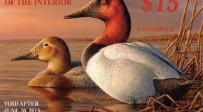 Best Conservation Christmas Gift: a Federal Duck Stamp