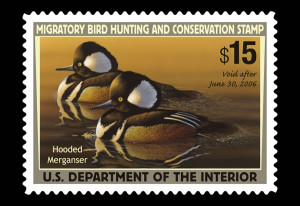 2005-2006 duck stamp