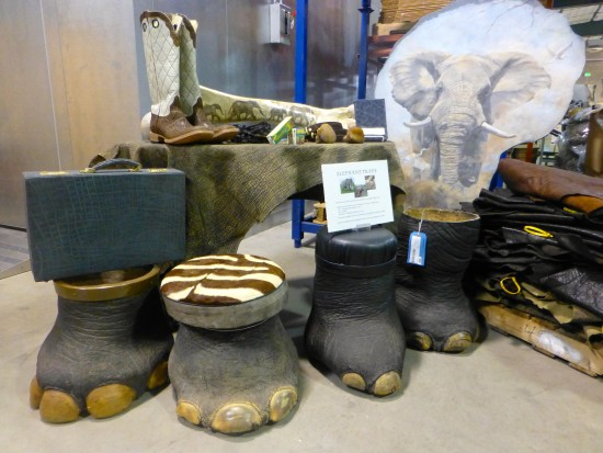 Elephant feet tables and foot stools on display inside the U.S. National Wildlife Property Repository