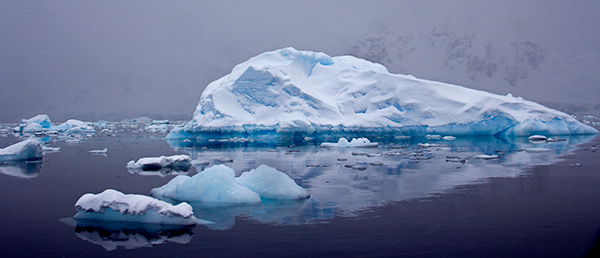 Although icebergs float in the ocean, they are made of frozen freshwater, not saltwater. ©Candice Gaukel Andrews