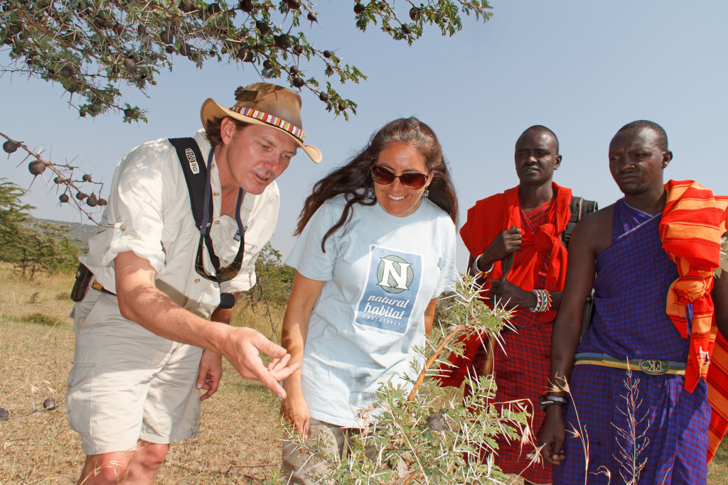 Maasai and safari guests discuss local grassland flora