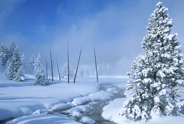 On a bright winter morning, snow enhances the beauty and quiet solitude of Yellowstone National Park. ©Henry H. Holdsworth