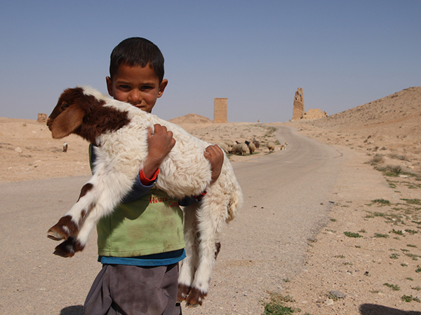 The 2007−2010 drought in Syria contributed to the current conflict, according to a new report. Water shortages killed livestock, and rural residents streamed into overcrowded cities. ©Ed Brambley, flickr