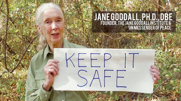 "U.N messenger of peace Jane Goodall makes an appearance at the end of a new music video meant to inspire international action on rapid climate change. ©From the video ""Love Song to the Earth,"" produced by Jerry Cope and Toby Gad"