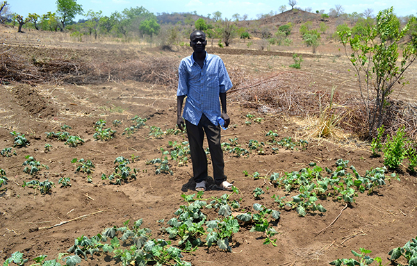 The Chikwawa district of southern Malawi, where this farmer grows his crops, is one of the worst impacted by rapid climate change. ©Eoghan Rice/Trócaire, flickr