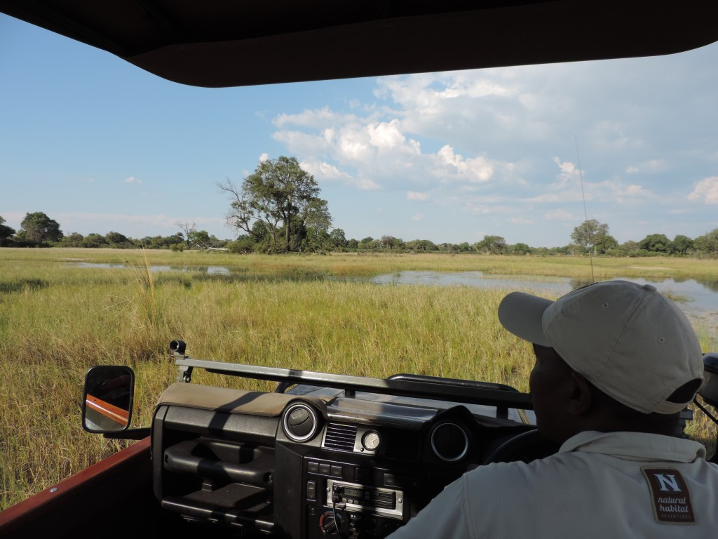 Sometimes your jeep is the only sign of human life for miles around during the green season, which really allows you to connect with nature in a very intimate way. © Deborah Ackerman/WWF-US