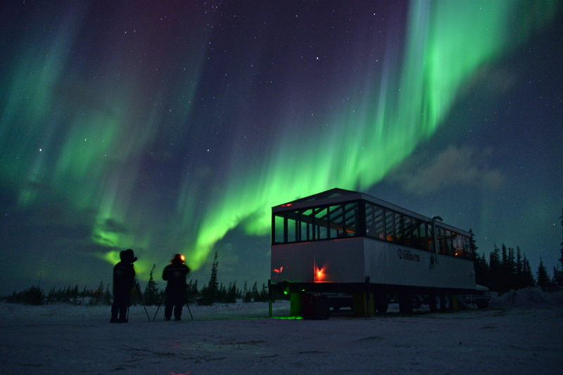 Northern lights as seen from Nat Hab's Aurora Pod®