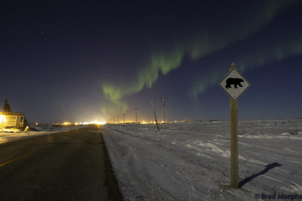 The aurora borealis seen from Churchill, Manitoba