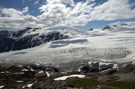 In Alaska, Exit Glacier has retreated more than 800 feet since 2008. ©Maureen, flickr