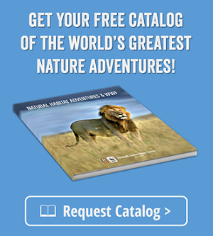 Natural Habitat Adventures Catalog