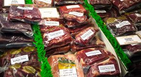 """Bushmeat and Locavores: When """"Eating Locally"""" Goes Bad for Going Big"""