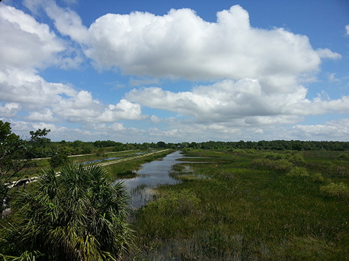 The Arthur R. Marshall Loxahatchee National Wildlife Refuge is part of the Florida Everglades. ©shelnew19, flickr