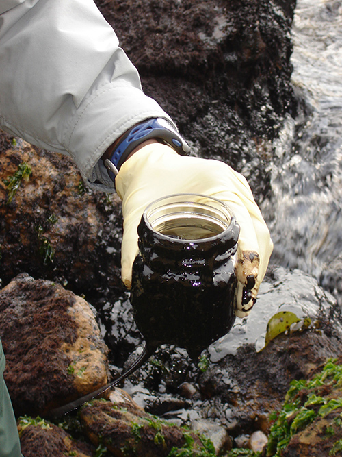 In 1970, after seeing the aftermath of a massive oil spill in California, then U.S. Senator Gaylord Nelson of Wisconsin proposed Earth Day, an annual observance for environmental awareness. ©National Park Service