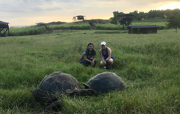 Natural Habitat's Galapagos Tortoise Camp at sunset