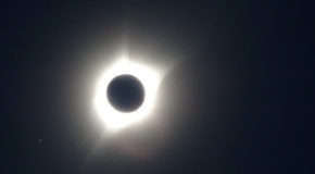 All In For Totality