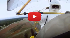 Videos: Whooping Cranes and a Bold Experiment