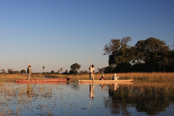 Mokoro canoe in the Okavango Delta