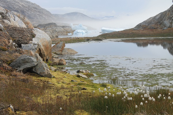 Base Camp Greenland