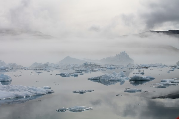 Icebergs in an East Greenland fjord