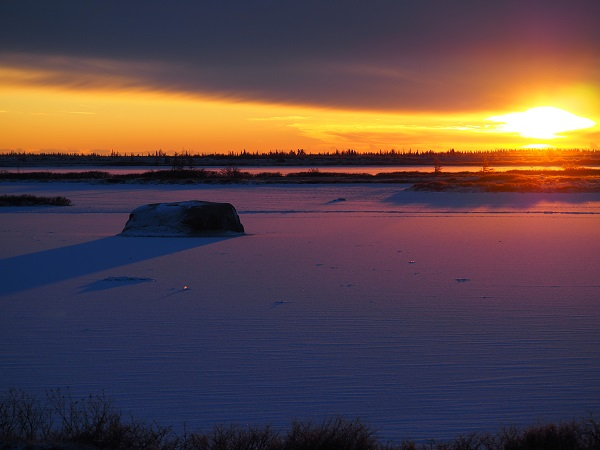 Churchill tundra sunrise