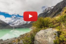 Video: The New Zealand Wilds